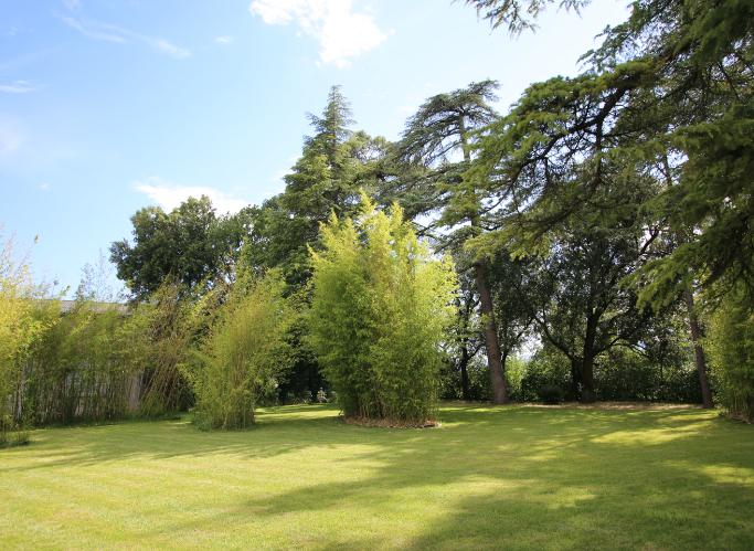 Espaces verts au Château de Chaussy